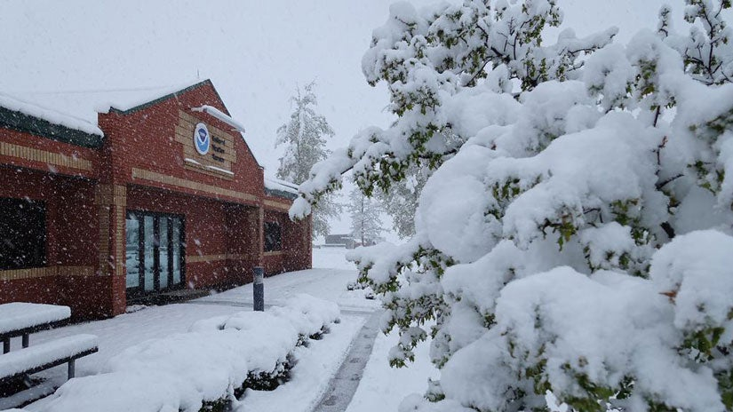arizona day meet snow winter