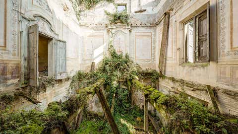 The interior of an abandoned building where the floor has completely decayed and has been replaced with overgrown plants. (Thomas Windisch/Caters News)