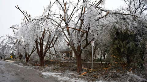 In these photos, taken Sunday morning of January 15, 2017, in Canadian, Texas, a home at the corner of Purcell and Sixth streets is surrounded by dismembered trees and branches. Ice-clad power lines lined the entire city, and many were reported down. (Photo credit: The Canadian Record)