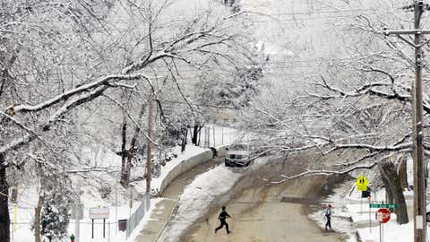 In this Dec. 14, 2015, photo, a coat of frost covers the trees in Mandan, N.D. A winter storm began moving into the Dakotas Tuesday, with freezing drizzle and dense fog making roads hazardous in some areas, prompting the closure of several schools and threatening heavy snowfall to come. (Mike McCleary/The Bismarck Tribune via AP)