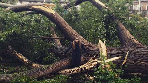 A woman stands amidst what remains of a large tree that was toppled by high winds in Amsterdam, The Netherlands, on Saturday, July 25, 2015. (Credit: Instagram/Annemarije Heijerman)