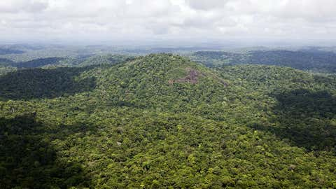 Aerial view taken on October 3, 2008 over the French Guiana's Amazonia, its rainforests contain a tenth of all the CO2 stored on Earth's land surfaces. (JODY AMIET/AFP/Getty Images)