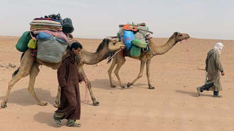 Nomads come back after travelling for seven days in the Moroccan desert on March 16, 2013 in M'hamid El Ghizlane, southeast of Zagora. (FADEL SENNA/AFP/Getty Images)