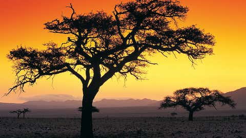 50. Namibia (tied) scored 74 out of 100, according to Gallup's Positive Experience Index. (Thinkstock)