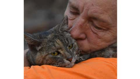 Debi and Jeff Brusatori of Hayfork, California, were forced to flee their home last week when the Fork Complex fire began encroaching on their property. They thought they had lost their tabby cat Ruthie Rosemary when she jumped out of their car, but five days later they found her safe and sound. (U.S. Forest Service, Shasta-Trinity National Forest/Facebook)