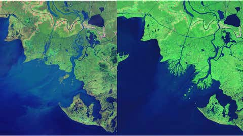 The emergence of the Atchafalaya Bay Deltas. The image on the left was taken in 1984, the one on the right in 2014. (NASA)