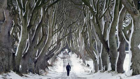 A man walks along the famous Dark Hedges avenue of trees in Antrim, Northern Ireland. This famous tunnel-liked avenue of intertwined beech trees was planted in the 18th-century. (Charles McQuillan/Getty Images)