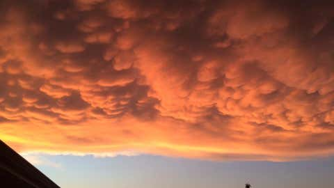 Mammatus clouds as seen over Northwest Indiana. (Photo Credit: Facebook/Kirsten Elizabeth)