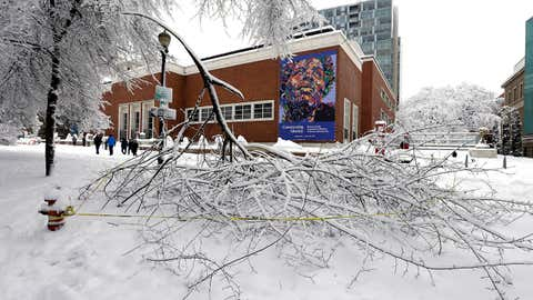 Tree branches, broken from the weight of heavy snow, are scattered on the ground of the park blocks across from the Portland Art Museum in Portland, Ore., Wednesday, Jan. 11, 2017. A major snowstorm spread through Portland and parts of Washington state overnight, toppling trees, closing schools and cutting power to thousands.(AP Photo/Don Ryan)