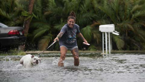 Darcelle Jacobs and her dog Skittles check out the flooding from Tropical Storm Emily on their street in Fort Myers Beach, Florida, Monday, July 31, 2017. (Andrew West/The News-Press via AP)