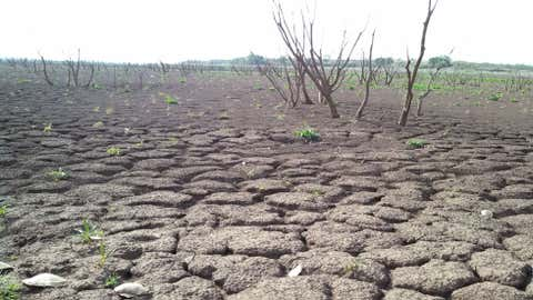 Lake Arrowhead, southeast of Wichita Falls, Texas, is down to 26 percent of its water capacity because of an awful drought. (Stephen Neslage/The Weather Channel)