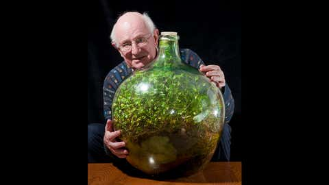 """Amateur gardener David Latimer from Cranleigh in Surrey has astonished experts on the long running BBC radio show """"Gardeners Question Time"""" by showing them his 52 year old 'bottle garden' - that has been sealed by a cork without water since 1972 and amazingly still seems to be thriving. (Phil Yeomans/BNPS)"""