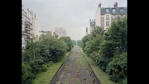 A photo from the 'By the Silent Line' series of La Petite Ceinture, an old Parisian railway. (Pierre Folk)