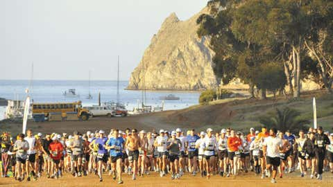 Runners experience an overall elevation climb of 4,000 feet during the course of the Catalina Island Conservancy Marathon, where they can expect to see buffalo grazing and even bald eagles out on the route's many hills. (Courtesy Spectrum Sports Management)