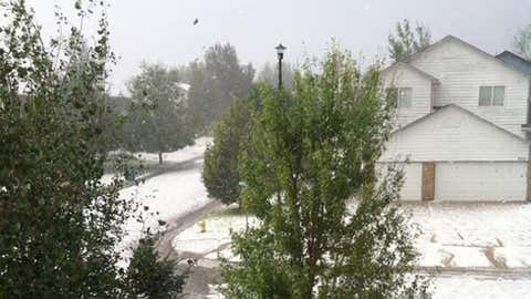 Hail covers yards in Berthoud, Colorado on Monday, July 14, 2014. (Photo credit: Twitter/Jan Dowker)