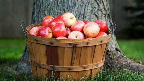 Apples (Chatelaine)