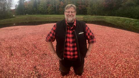 Murray Johnston stands in a pool of floating cranberries, Oct. 9, 2017. (CITYNEWS/Audra Brown)