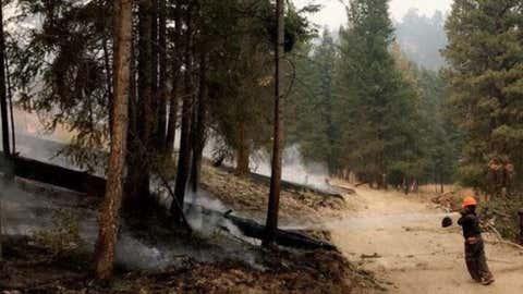 Finlay Creek Fire (Photo courtesy BC Wildfire Service)