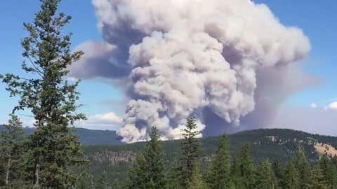 A wildfire east of Kelowna in the Joe Rich area (Screenshot: Twitter video)