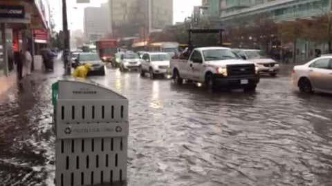 (Screengrab - video by NEWS 1130's Marcella Bernardo)