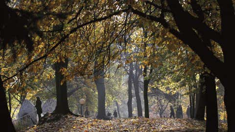 People walk amidst fallen leaves in a park under seasonal colored trees on an autumn day in the Belarus capital of Minsk, Thursday, Oct. 18. (AP Photo/Sergei Grits)