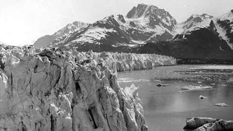 In the photo above, the west shoreline of Muir Inlet in Alaska's Glacier Bay National Park & Preserve is shown as it appeared in 1895. Notice the lack of vegetation on the slopes of the mountains, and the glacier that stands more than 300 feet high. See the glacier as it looked in 2005 on the next page. (USGS/Bruce Molnia)