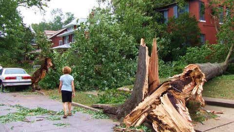 A photo of storm damage from Louisville, provided by the Louisville, Kentucky NWS office.