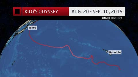 Track history of Kilo from August 20 - September 10, 2015.