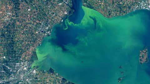 Landsat 8/NASA/NOAA