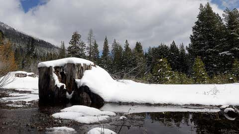 A stream flows through a meadow near Echo Summit, Calif., Tuesday, March 3, 2015. California's third snow survey this winter found the Sierra Nevada snowpack is far below normal and leaning toward being the lowest on record in more than two decades. (AP Photo/Rich Pedroncelli)