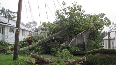 This tree damaged a home in Randolph, New York on July 24, 2010. (NWS-Buffalo)