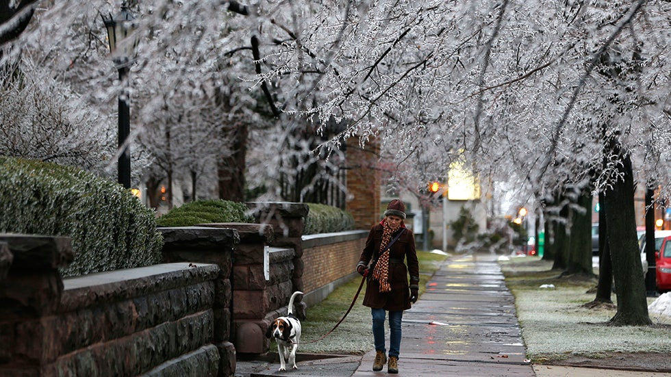 Winter Storm Gemini: Power Outages Could Last Days in Michigan