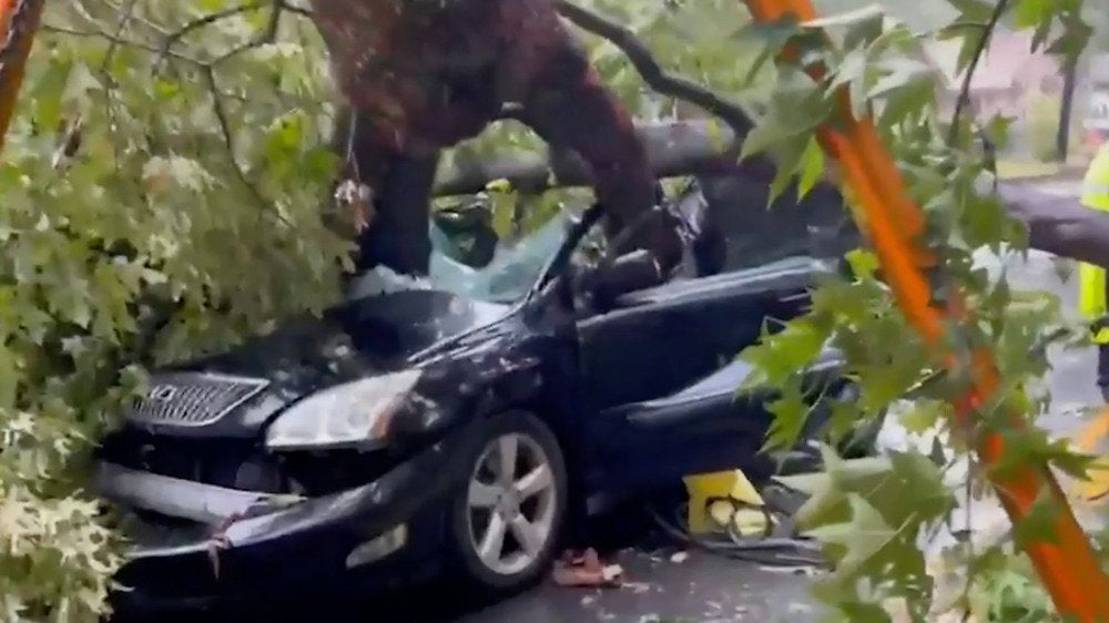 Woman Trapped in Car After Tree Falls During Claudette