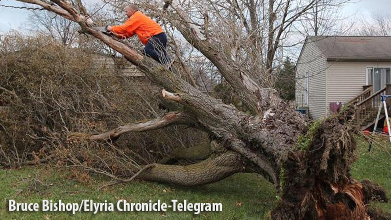 High Winds Injure 3 in Ohio, Kentucky; Crews Work to Restore Electricity In Michigan