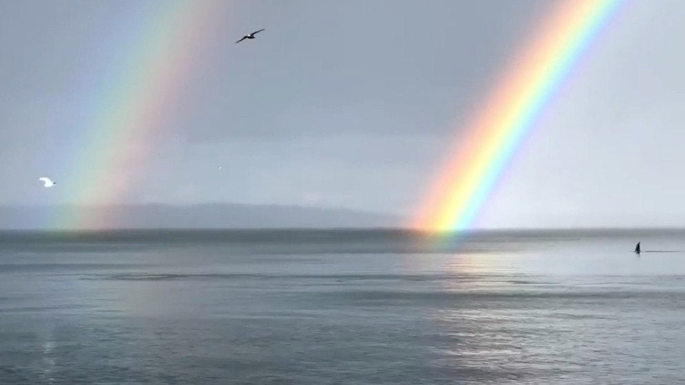 Double Rainbow Over Swimming Orcas Spotted Near Seattle