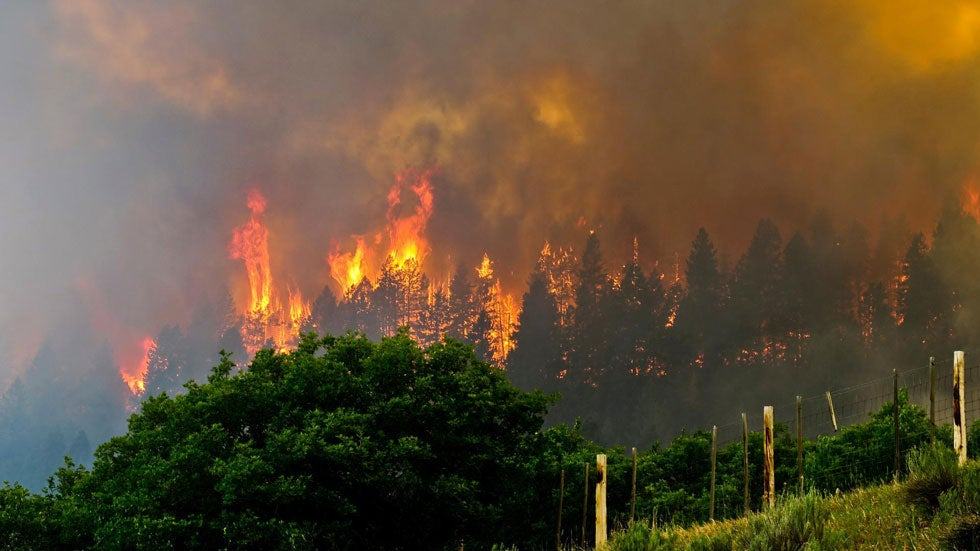 National Forest in Colorado Burns; 300 Homes Threatened in New Mexico as Pair of Fires Rage