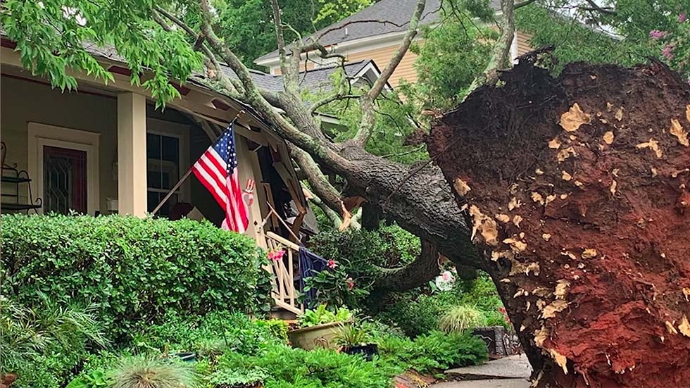 Carolina Storms Packing Powerful Winds Kill 1