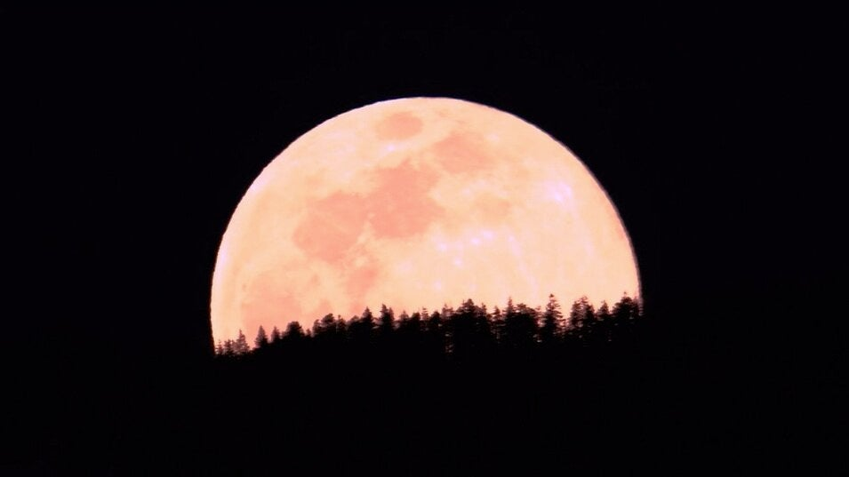 Viewing Guide to Strawberry Supermoon