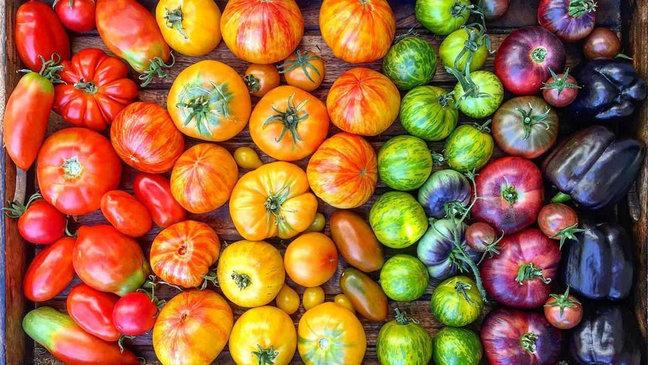 Appetizing Photos of Heirloom Tomatoes