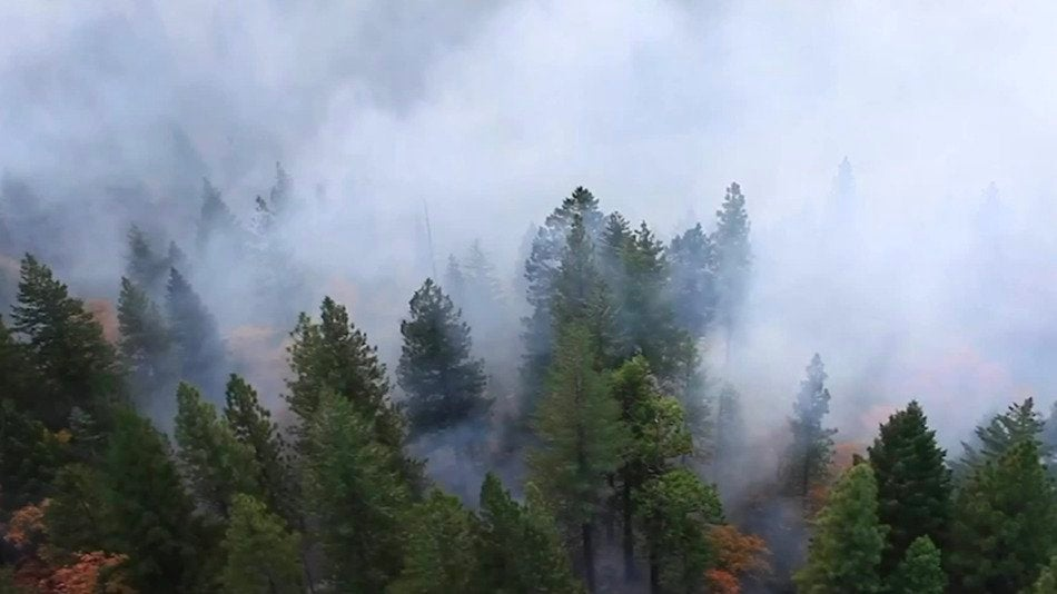 Toxic Lead Found in California Wildfire Smoke, Study Finds