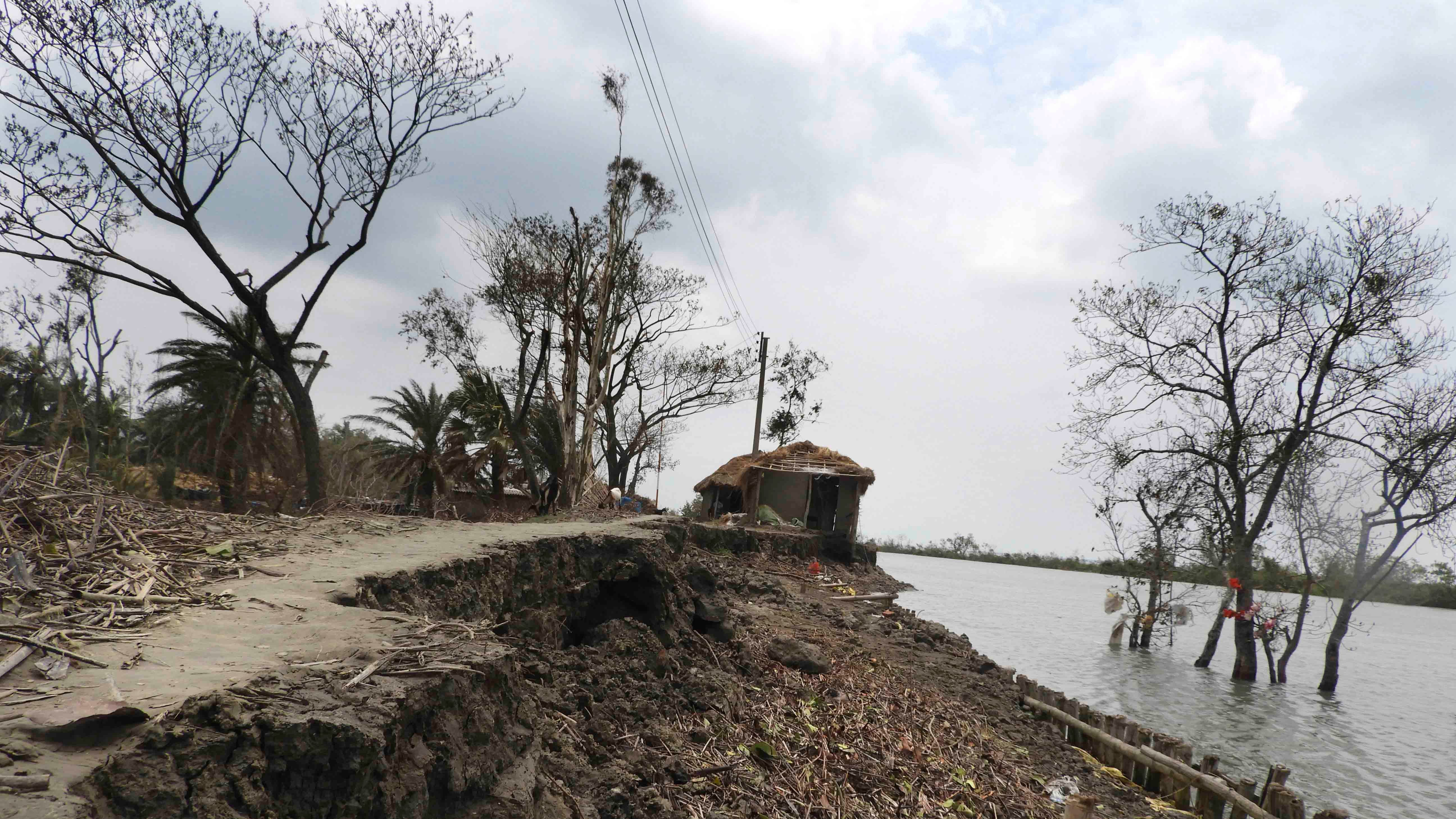 Tropical Cyclone Amphan Leaves Behind Ecological, Humanitarian Disaster in Sundarban Mangroves | The Weather Channel