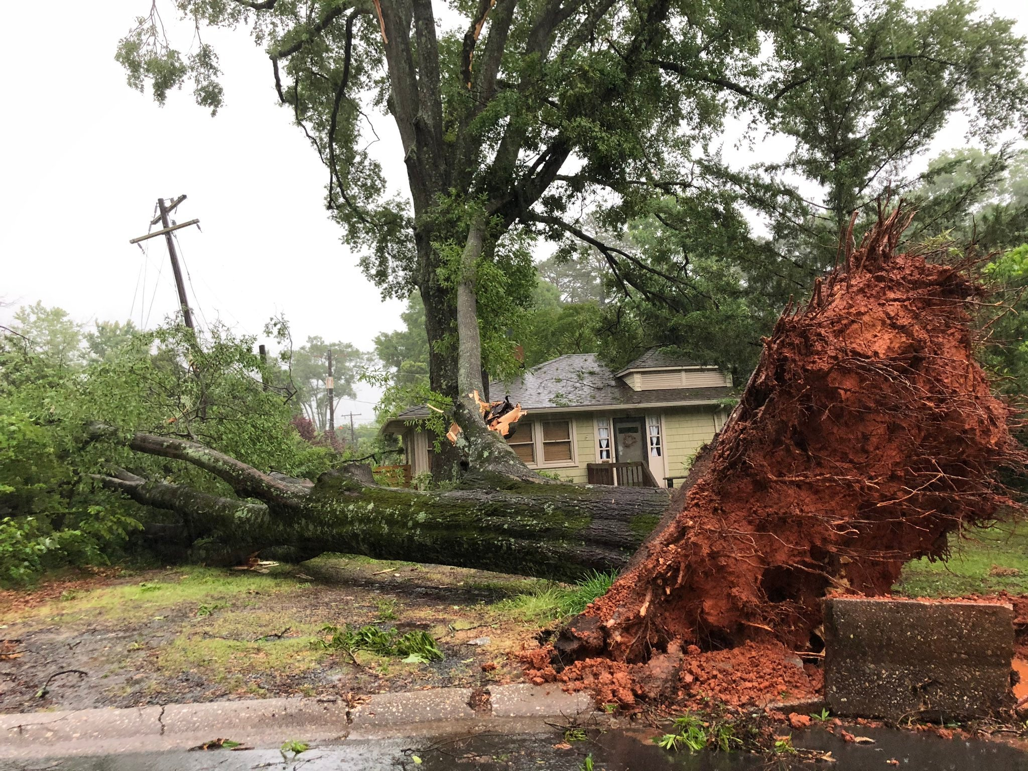 Two People Killed by Falling Trees as Charlotte Area Pounded by Severe Storms; Tornado Confirmed in South Carolina