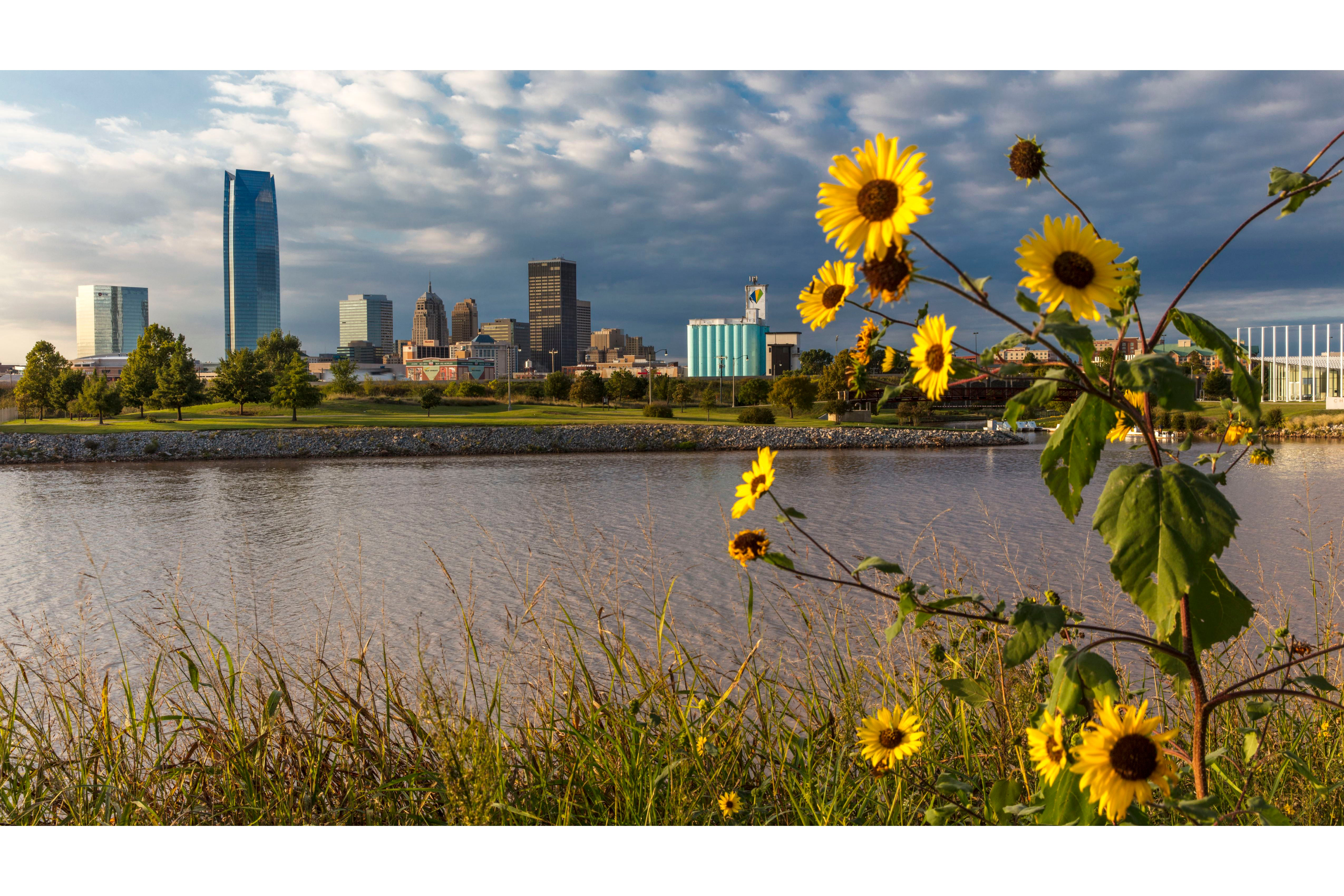 Top 10 Worst Places to Live in the U.S. for Allergy Sufferers