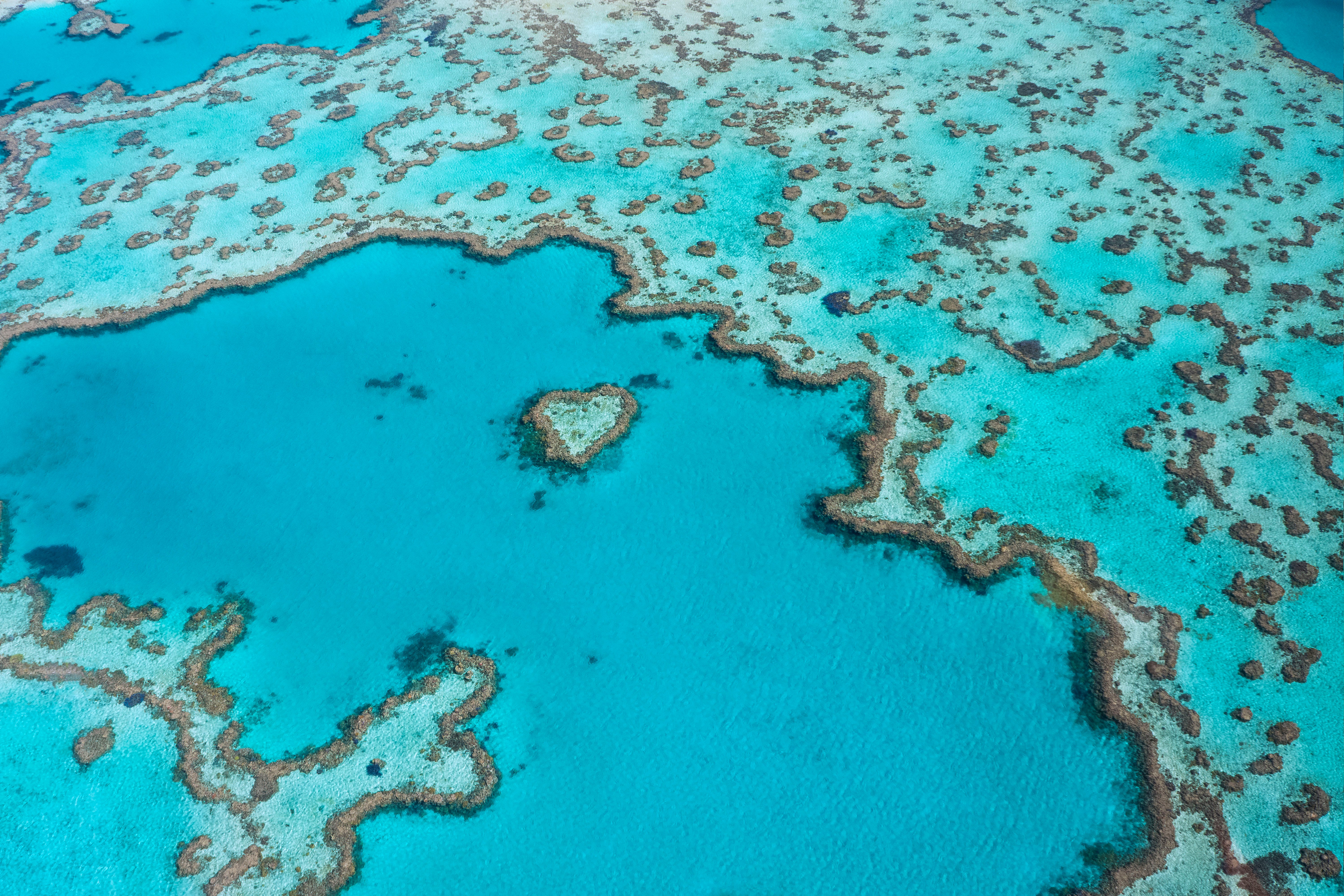 The Heart Of The Great Barrier Reef