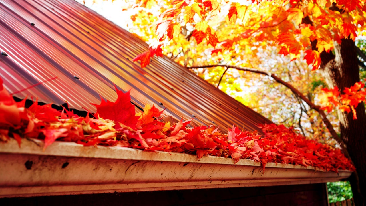 How To Clean The Gutters on Your House