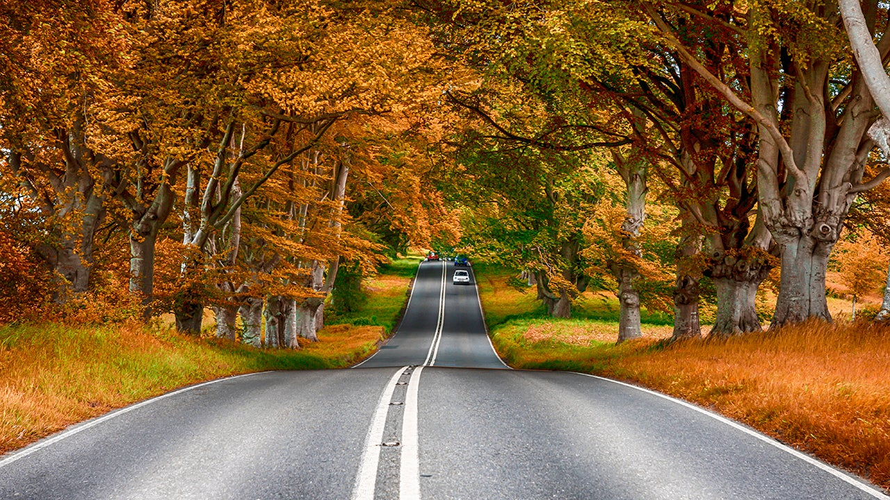 Best Fall Drives Across The U.S.