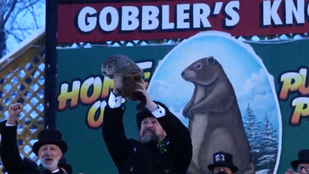 What Did the Groundhog See? Punxsutawney Phil's Winter ...