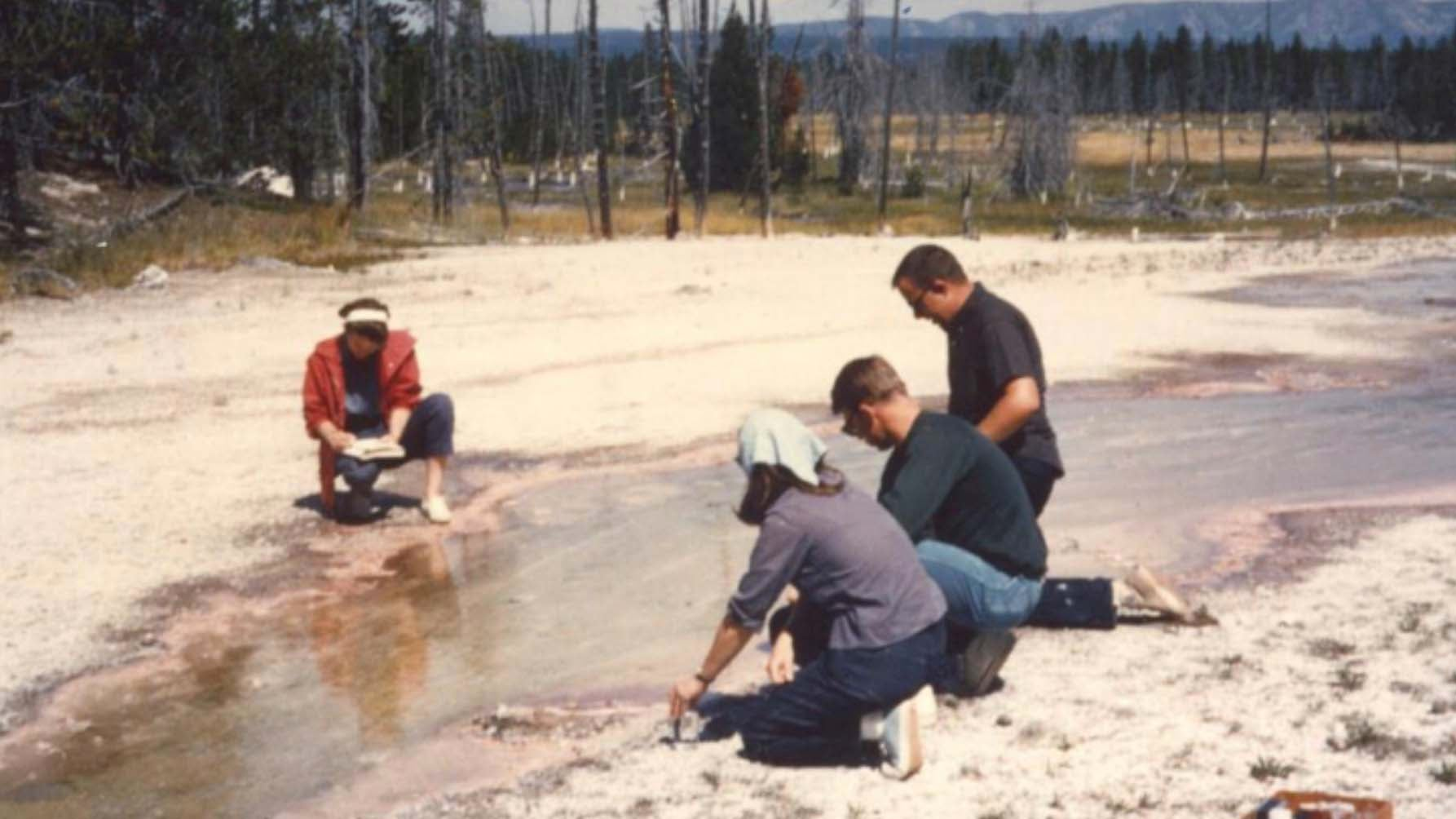 Scientist Recounts 1960s Yellowstone Research That Made COVID-19 PCR Tests Possible | The Weather Channel - Articles from The Weather Channel | weather.com