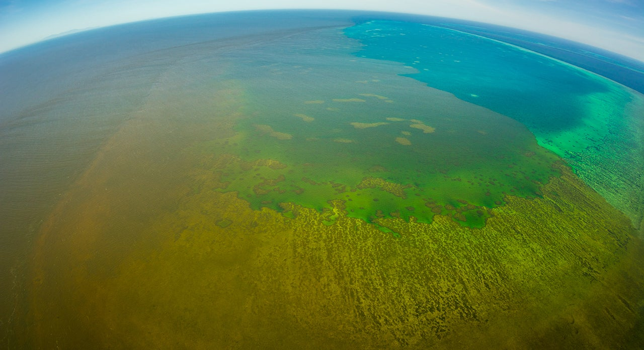 Pollution Plumes Threatening Great Barrier Reef