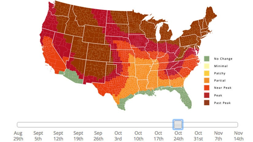 Fall Foliage Map Shows When You Should Plan Leaf-Peeping Vacation